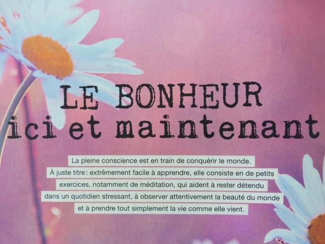 Magazine Flow n1 - Article Pleine conscience