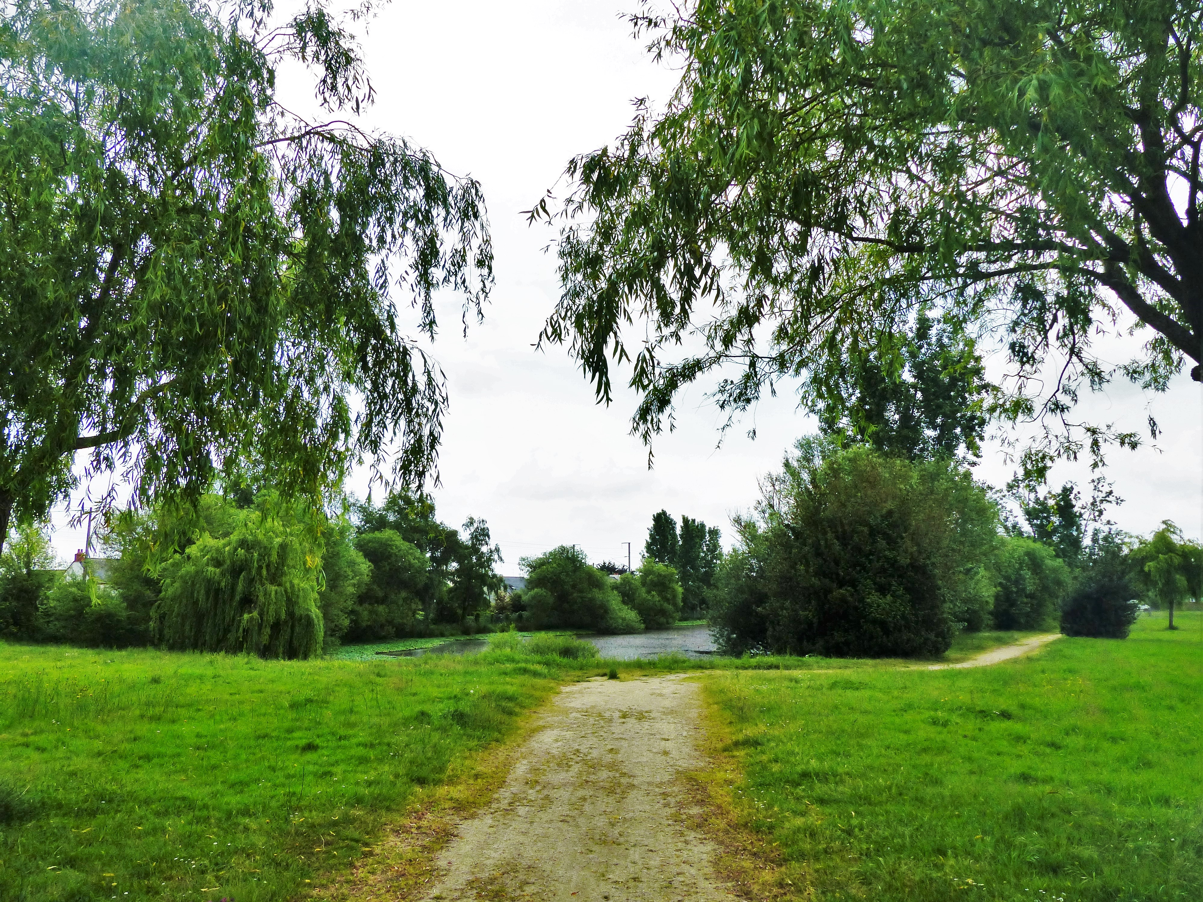 Chemins de brouette